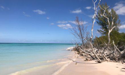 Kuba Reisebericht Tag 8: Cayo Jutias