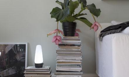 Licht spricht: Berliner Startup Senic launcht smartes Designlicht COVI auf Kickstarter und lässt Amazons Alexa erstrahlen