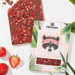 FoodStartup raccoon