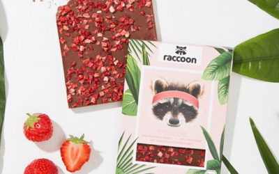 FoodStartup raccoon