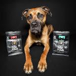 Food für Hunde: Tales & Tails