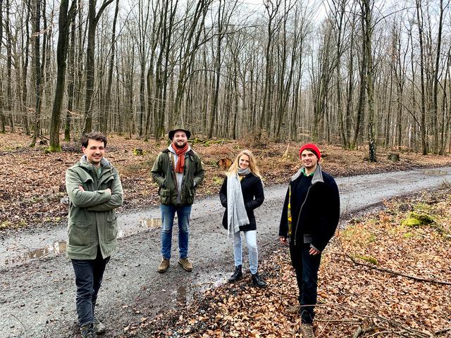 Baum- statt Netflix-Abo: Startup kompensiert CO2 und pflanzt Bäume in Deutschland